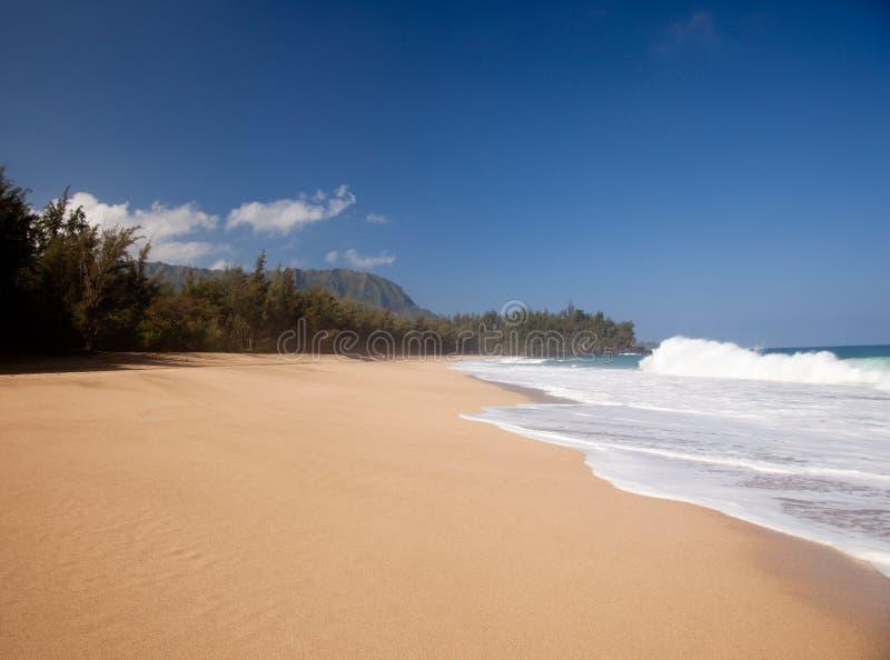 lumahai παραλιών πέρα από τα κύματα στοκ εικόνα