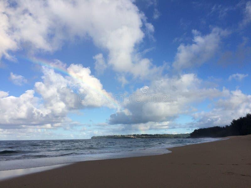 Lumahaistrand op het Eiland van Kauai, Hawaï royalty-vrije stock afbeelding
