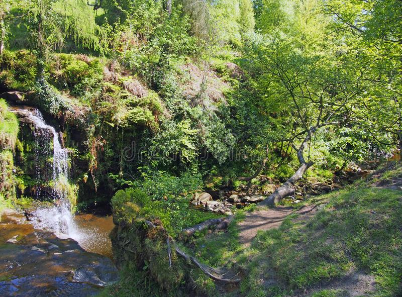 lumb hole falls a waterfall in woodland at crimsworth dean near pecket well in calderdale west yorkshire royalty free stock photo
