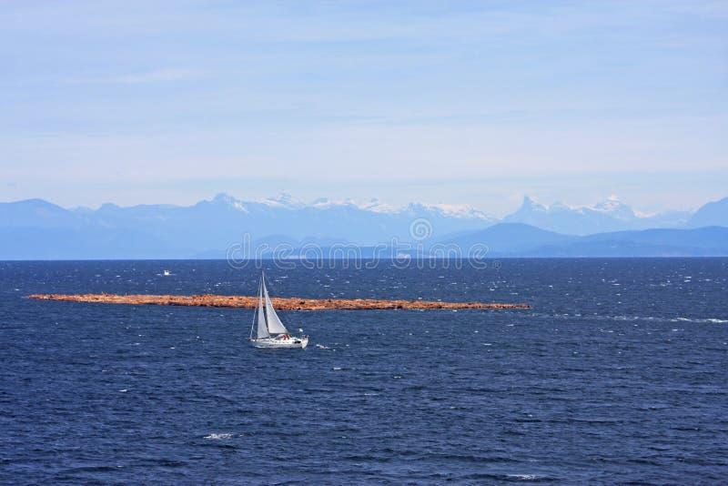 Lumbaal vlot van het Eiland van Vancouver stock fotografie