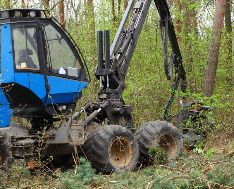 Download Lumber industry. stock photo. Image of lumberjack, logging - 33306066