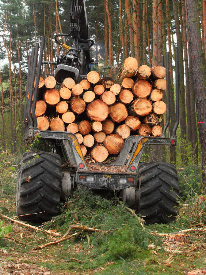 Download Lumber industry. stock image. Image of alternative, business - 33306123
