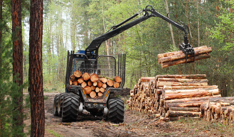 Download Lumber industry. stock photo. Image of commodity, harvester - 33306200