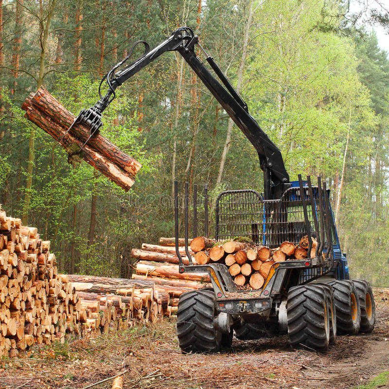 Download Lumber Industry. Stock Photo - Image: 33306240