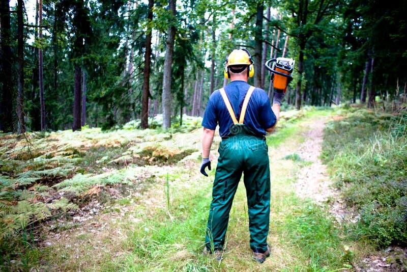 Lumberjack arkivbilder