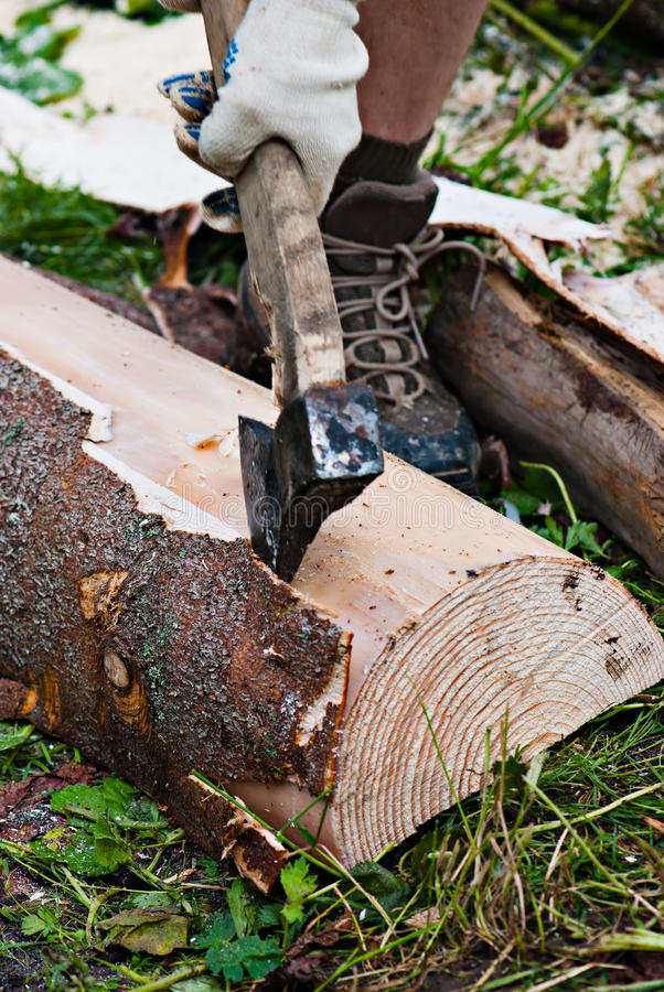 Lumberjack. Splitting wood with an axe stock photos