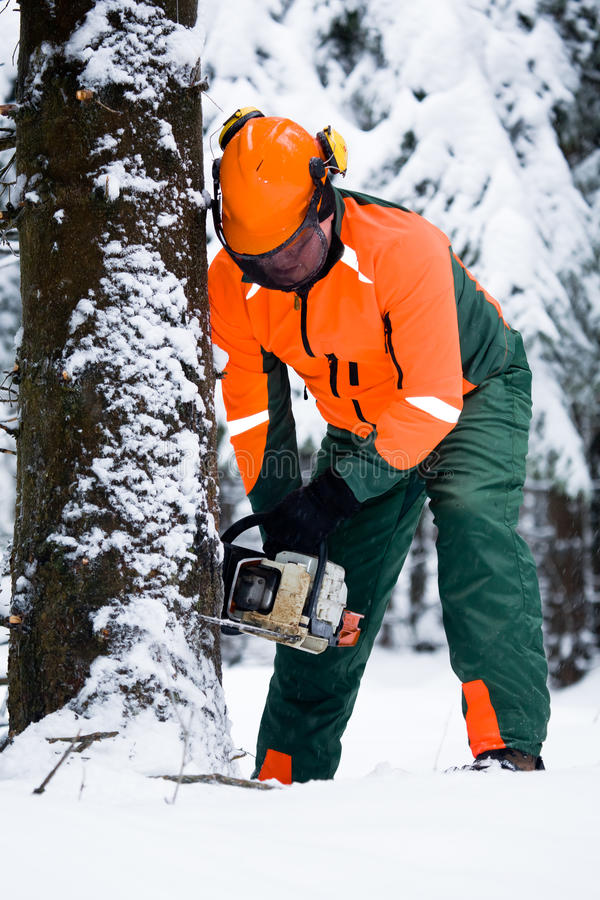 Lumberjack стоковые фото