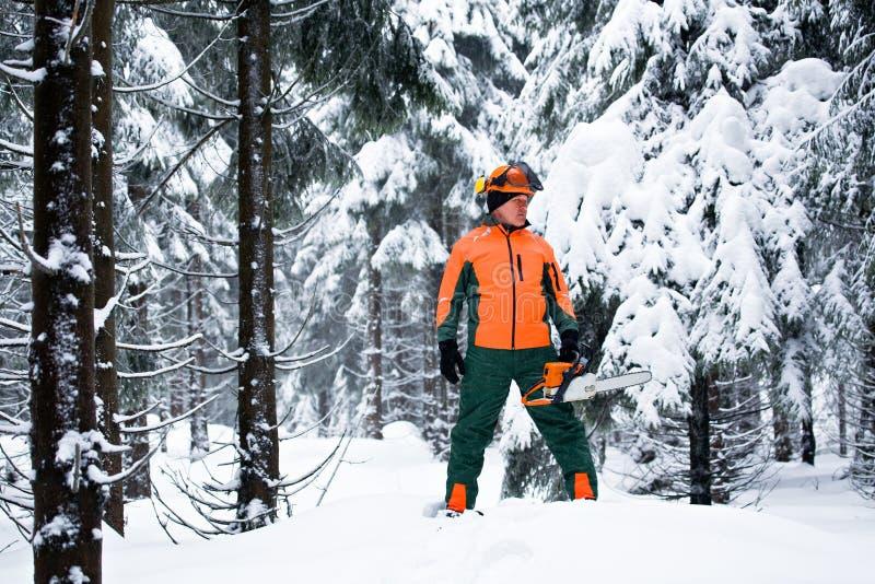 Lumberjack стоковая фотография rf