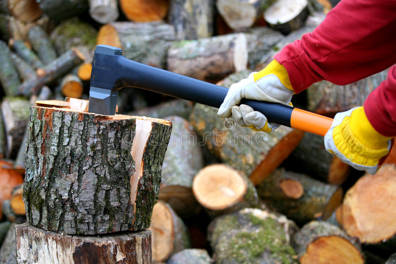 Lumberjack. In action wearing protection gloves royalty free stock photo