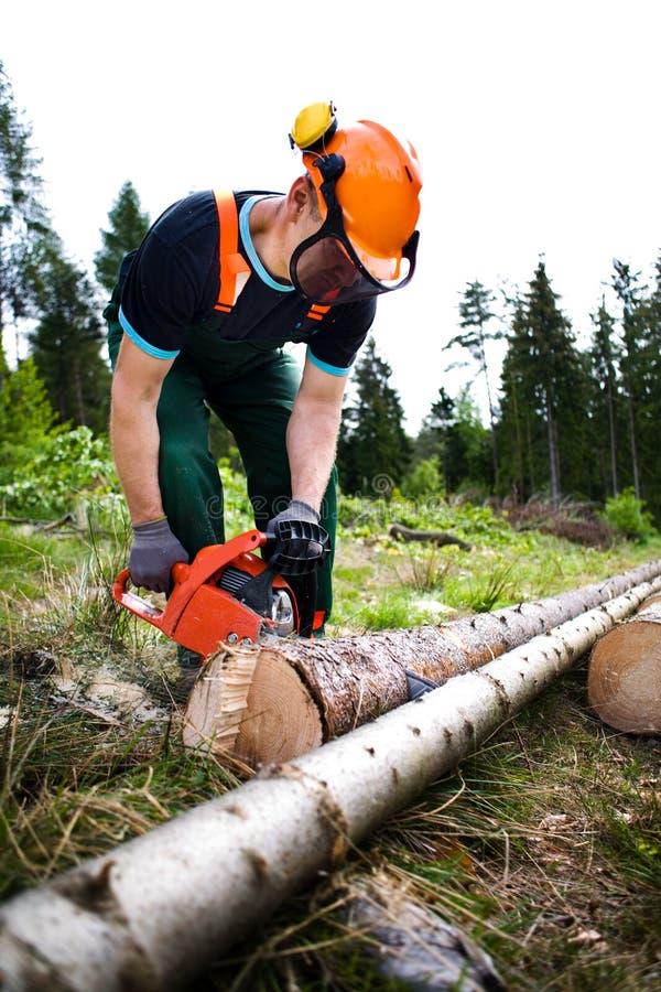 Lumberjack arkivbild