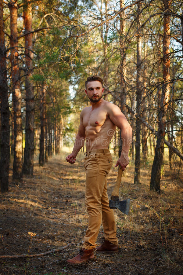Lumberjack With Ax And Firewood Goes Through Forest. Stock