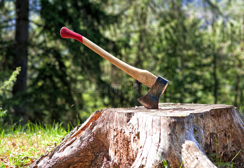 Lumberjack axe. Detail of classic lumberjack axe stock photo
