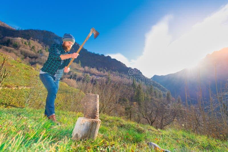 A lumberjack with a beard cuts a log.  stock photo