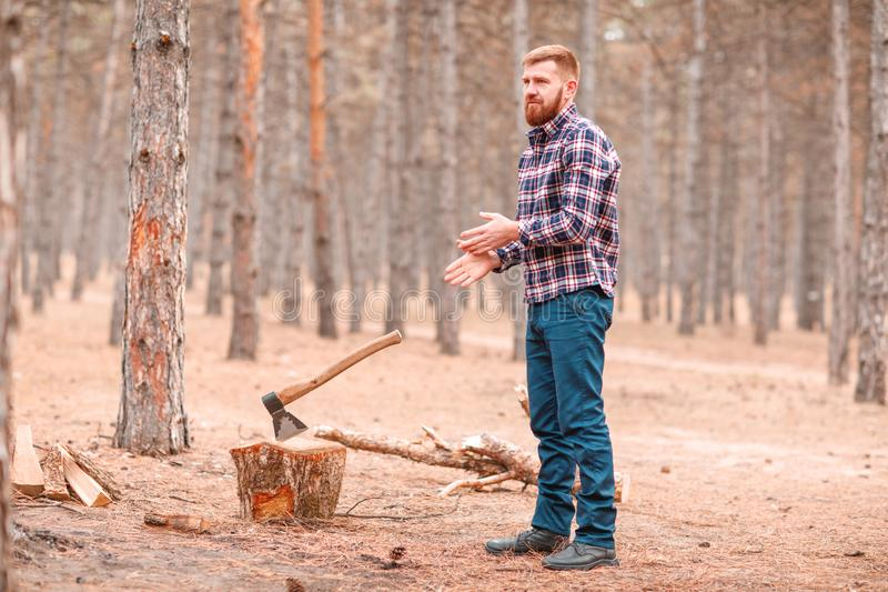 A lumberjack with a beard stands and shakes his hands of sawdust. A nearby ax sticks out in a pen. Outdoors. A red lumberjack with a beard stands in a blue royalty free stock images
