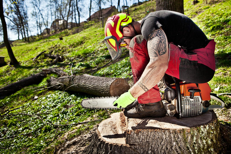 Lumberjack with chainsaw. After work royalty free stock photo