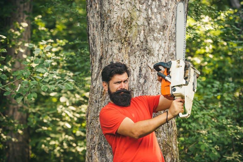 Lumberjack con sega in mano Deforestazione Chainsaw Legna da ardere come fonte di energia rinnovabile Tagliatrice con fotografia stock libera da diritti