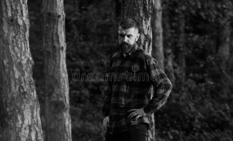 Lumberjack concept. Man with calm, tired face and beard in plaid shirt. Lumberjack concept. Man with calm, tired face and beard in plaid or checkered shirt stock photography