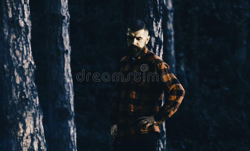 Lumberjack concept. Man with calm, tired face and beard in plaid shirt. Lumberjack concept. Man with calm, tired face and beard in plaid or checkered shirt stock image
