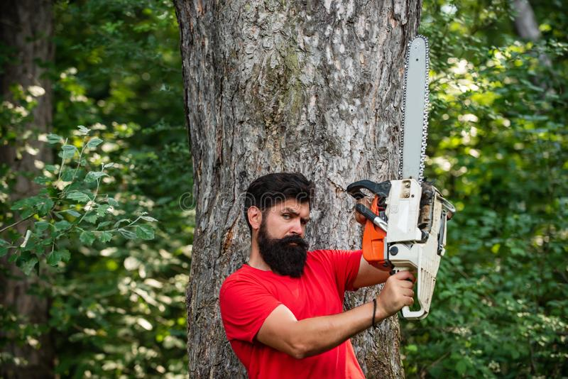 Lumberjack concept. Professional lumberjack holding chainsaw in the forest. Man doing mans job. Handsome young man with. Axe near forest stock photos