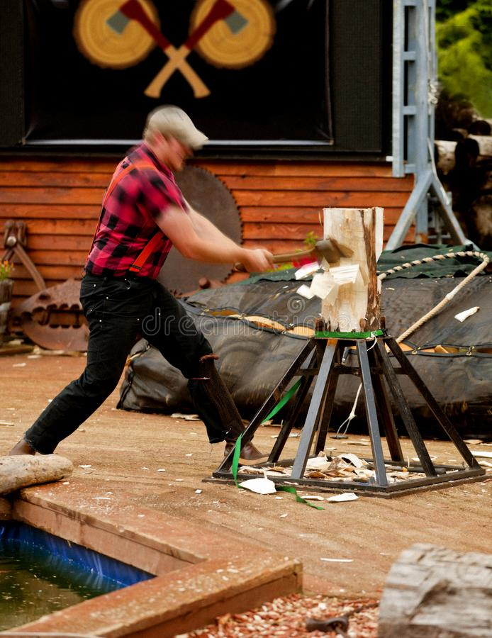 LUMBERJACK HACKING INTO LOG WITH AX AND CHIPS FLYING ALL OVER stock photo