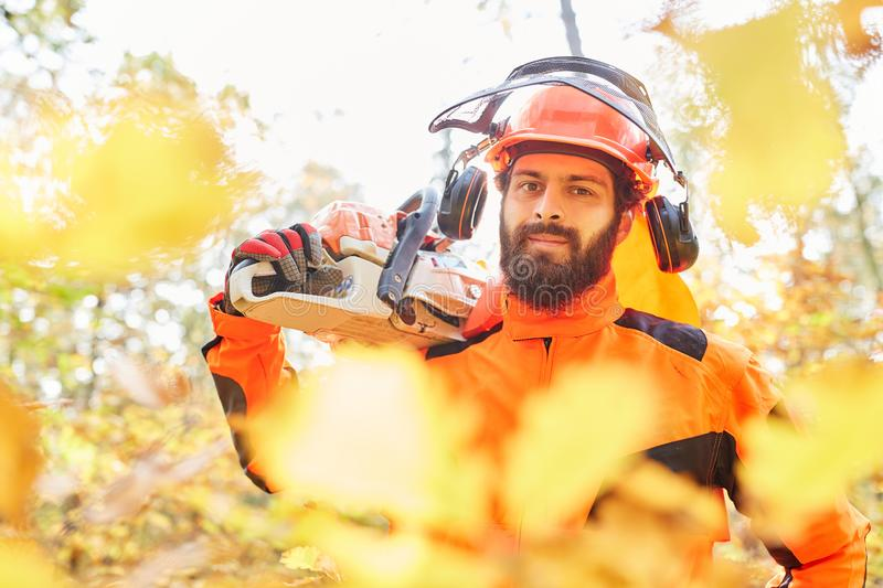 Lumberjack in protective gear and with chainsaw. Man as a lumberjack in protective gear and with chainsaw in the autumn in the forest royalty free stock photography