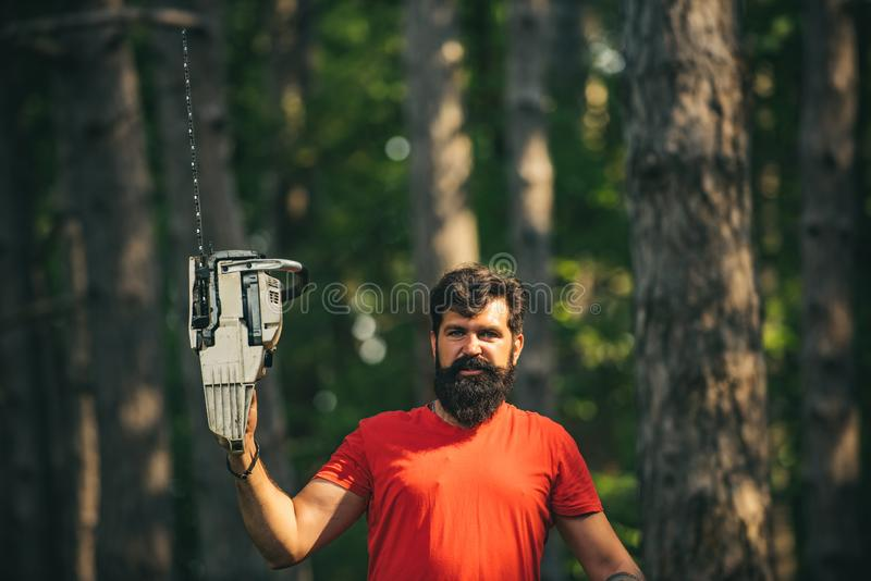 Lumberjack in the woods with chainsaw axe. Harvest of timber. Woodworkers lumberjack. A handsome young man with a beard. Carries a tree royalty free stock images