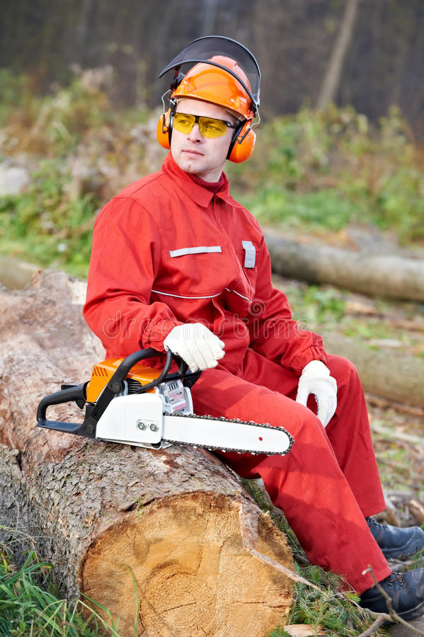 Download Lumberjack Worker With Chainsaw In The Forest Stock Photo - Image of helmet, protection: 22170712