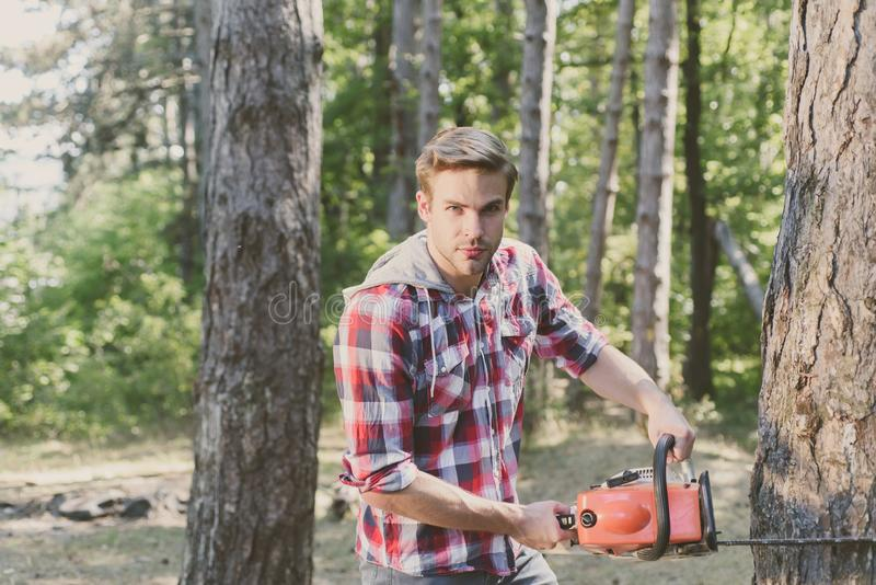 Lumberjack worker with chainsaw in the forest. Professional lumberjack holding chainsaw in the forest. Lumberjack stock photography