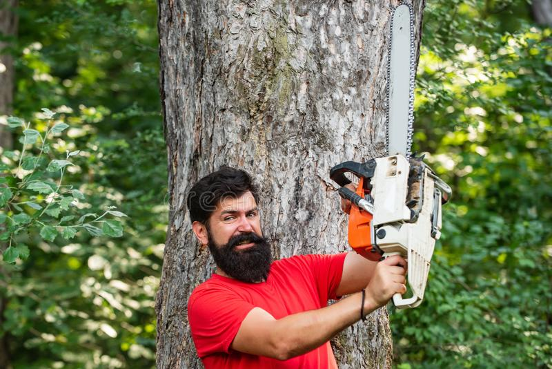 Lumberjack worker walking in the forest with chainsaw. Stylish young man posing like lumberjack. Lumberjack worker royalty free stock photo