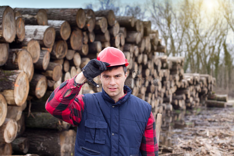 Lumberjack. Young lumberjack holding his helmet with hand in front of cut trunks in forest royalty free stock photos