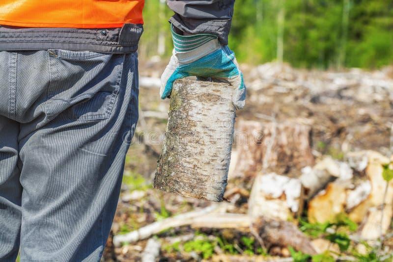 Lumberjack z łupką w drewnach obrazy royalty free