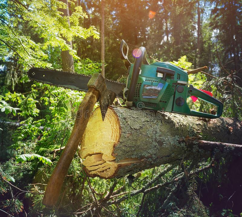 Lumberjacks equipment, chainsaw and ax at the broken tree royalty free stock photography