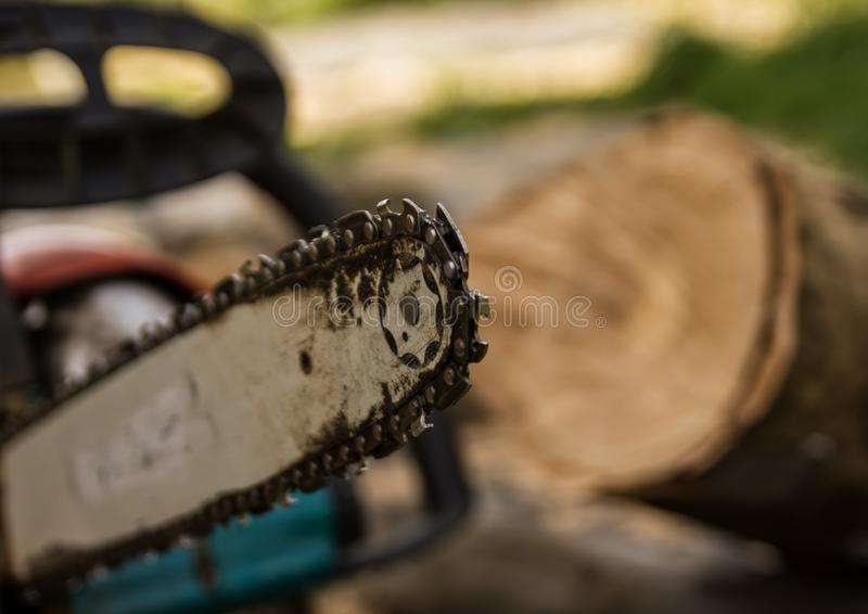 Lumberman using chainsaw sawing dry wood lying on ground. Lumberman using chainsaw sawing dry wood lying on ground royalty free stock photos