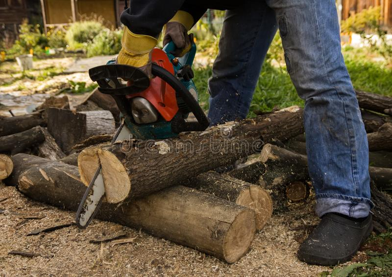 Lumberman using chainsaw sawing dry wood lying on ground. Lumberman using chainsaw sawing dry wood lying on ground royalty free stock images