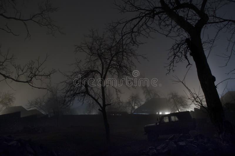 Lumière étrange dans une forêt foncée la nuit, paysage brumeux fantasmagorique des silhouettes d'arbres avec la lumière derrière, photos stock