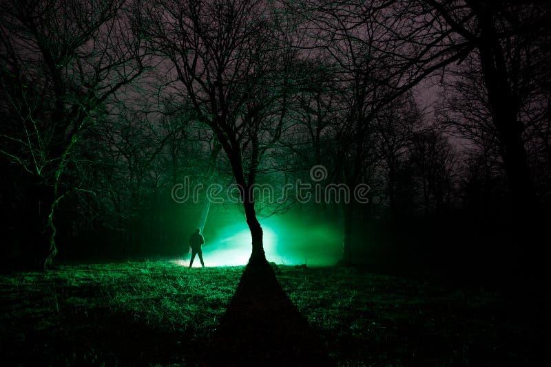 lumière étrange dans une forêt foncée la nuit Silhouette de personne se tenant dans la forêt foncée avec la lumière Nuit foncée d image libre de droits