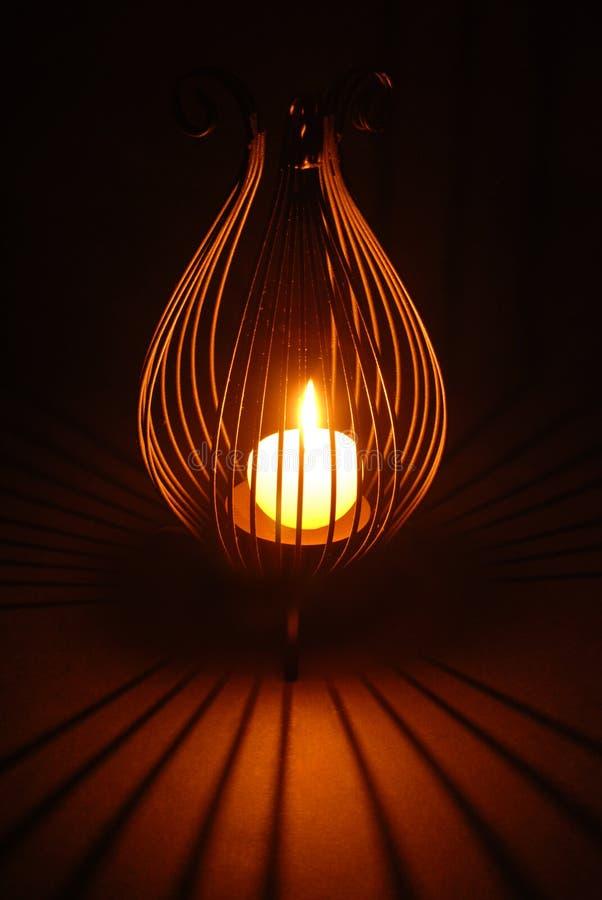 Lumière adorable photos libres de droits