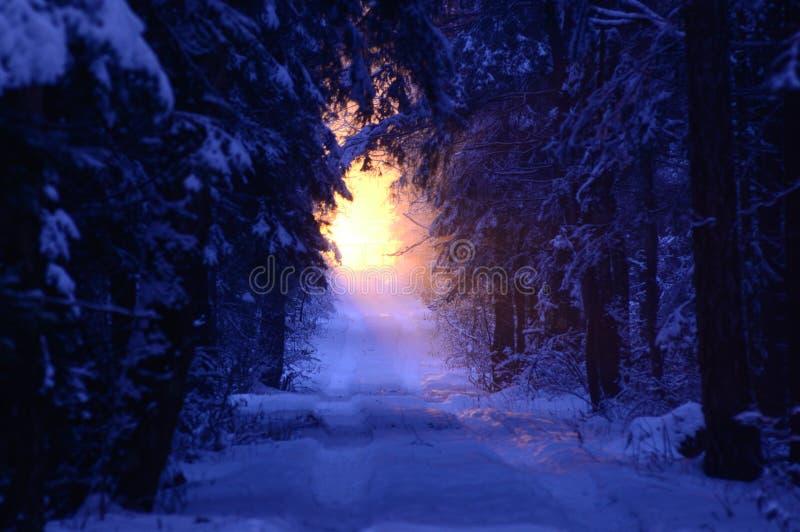 Lumière dans la distance photos libres de droits
