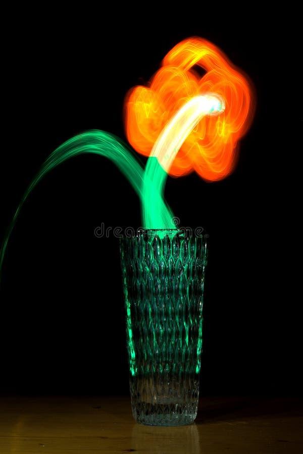 lumière de fleur peinte image libre de droits