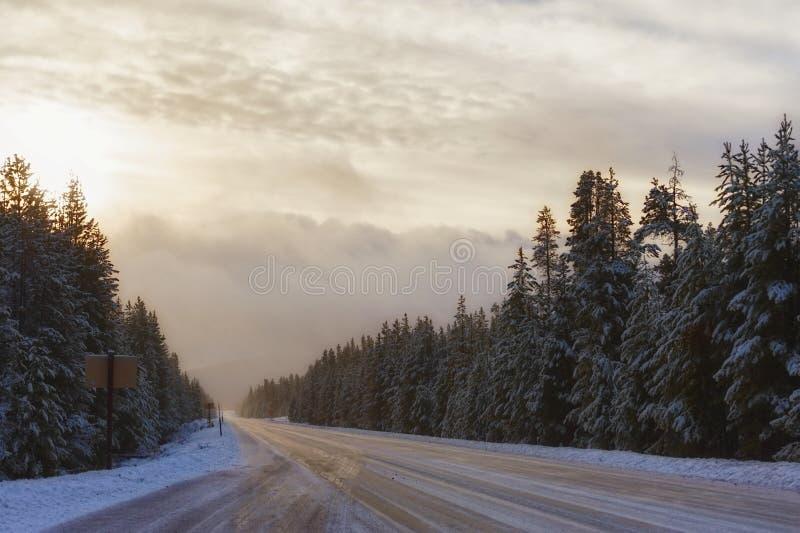 Lumière de matin le long de route abandonnée d'hiver photo libre de droits