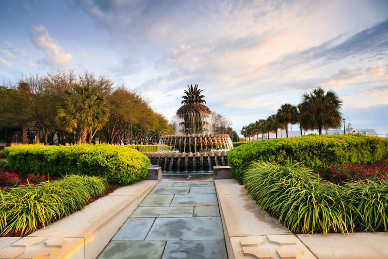 Lumière de matin sur le Sc de Charleston de fontaine d'ananas images libres de droits