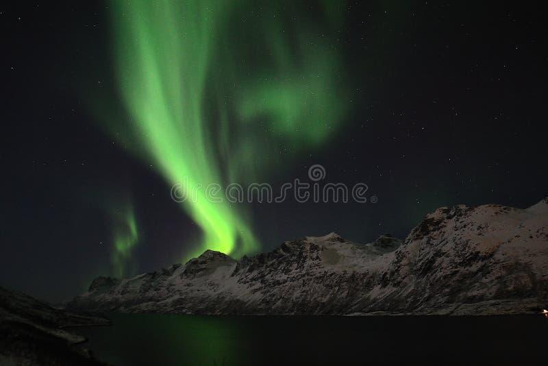 Lumière du nord dans Tromso image libre de droits