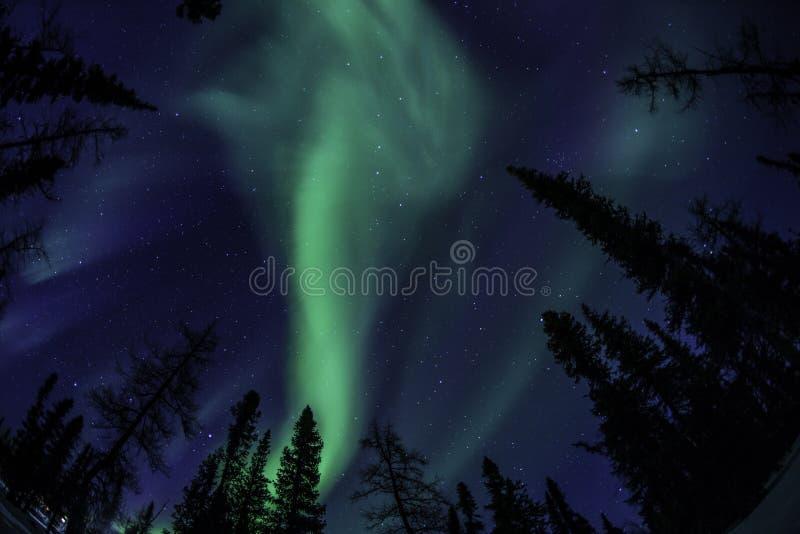 Lumière du nord de Kuujuaq photos libres de droits