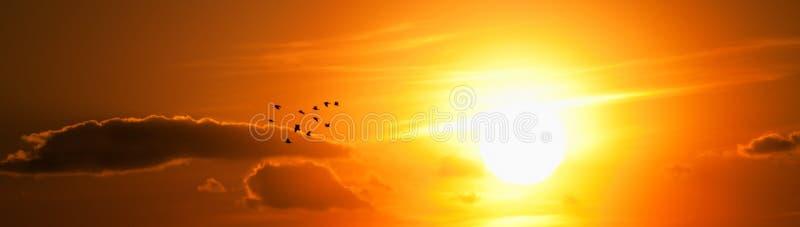 Lumière du soleil photos libres de droits