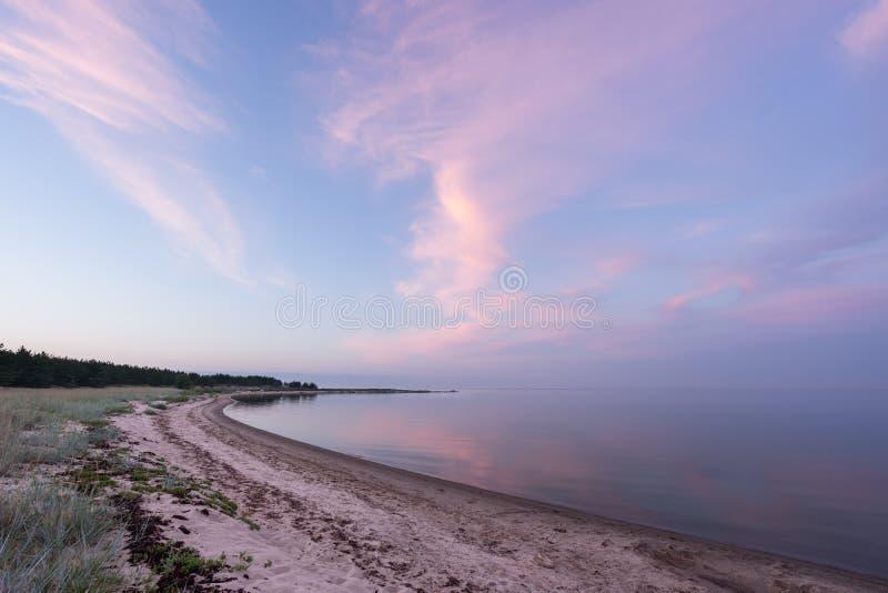 Lumière du soleil de soirée et arbre impeccable sur la côte, les nuages roses et le fond de ciel bleu été de montagnes d'horizon  photos libres de droits