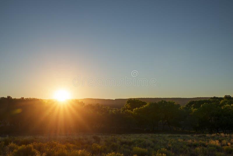 Lumière du soleil pendant le matin photos stock