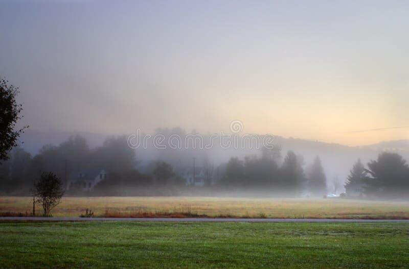 Lumière du soleil striant par les arbres brumeux un matin d'automne photos stock
