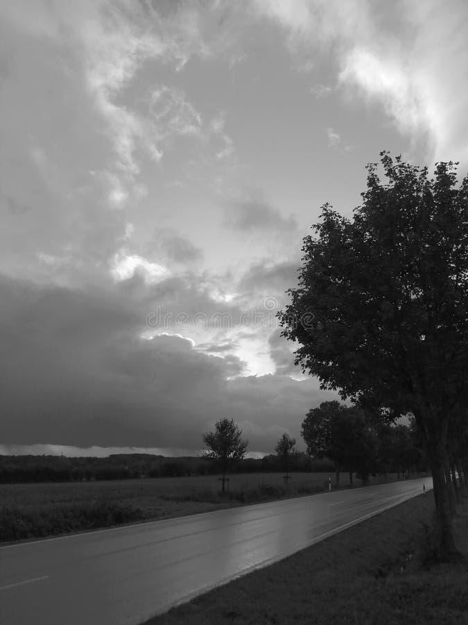 Lumière et aube en automne photo stock