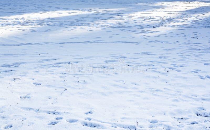 Lumière et ombre de neige images stock