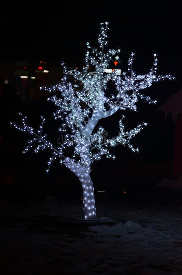 Lumières de Noël bleues sur des arbres photos stock